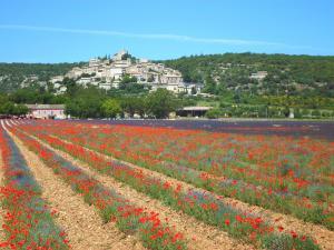9 km von La Rostane: Simiane La Rotonde