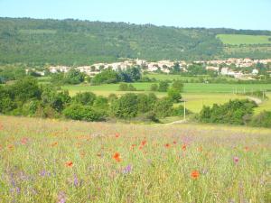 Saint Christol en Provence