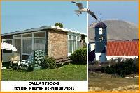 Ferienhäuser in CALLANTSOOG, Nordholland,  nur 300 Meter vom Strand und Meer