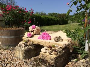 Überall blüht es und alte Rosensorten duften.