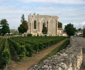Ganz nah: Wein- & Weltkulturerbestadt St. Emilion