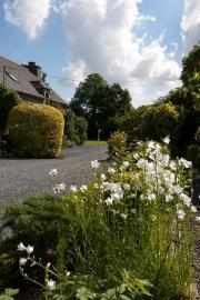 Garten  LAMPALLEC  1