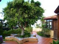 Freistehendes Haus mit schönem Garten