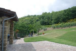 Meadow around the villa