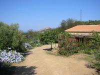 Ferienwohnung auf Korsika im rechten Teil des Landhauses (s.B),  jedoch ca.45 qm mit 1 Schlafzimmer