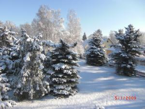 Mahlow im Winter