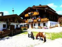 Herzlich willkommen auf unserem Bauernhof mit Ferienwohnungen in Zell am Ziller, Tirol. Österreich