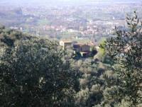 Ferienhaus in der Toskana am Bauernhof mit Panoramablick auf Calci und Meer am Rand des Val Graziosa