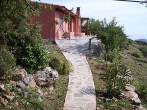Gartenweg zur Terrasse