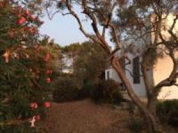 Casa Som do Mar ist ein Haus einer Architektenfamilie an der Ostalgarve mit großem Garten.