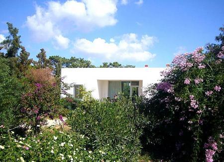 Ferienhaus in Arroteia/Livramento