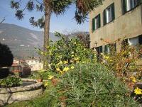 Calci: Originell gestaltete Einraumwohnung mit Schlafempore und getr. Bad, Garten direkt vor der Tür