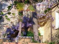 Ferienwohnung mit romantischen Garten in Gavorrano,Toskana in Italien zu vermieten!
