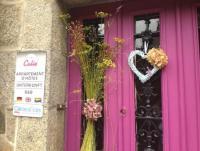 FeWo in der Mitte eines malerischen bretonischen Städtchens in den Côtes d'Armor privat zu vermieten