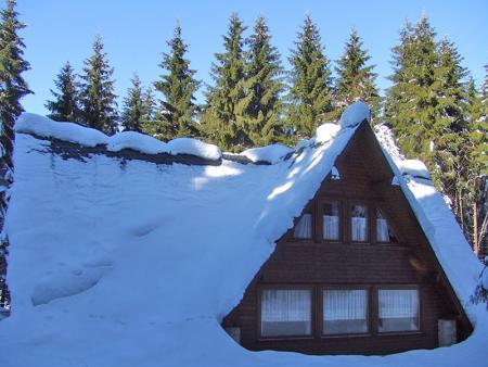Ferienhaus in Frauenwald