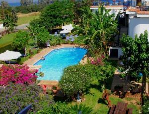 Herrlicher Garten mit Pool und Meer im Hintergrund