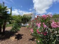 Ferienhaus Casa Flor do Mar in Arroteia an der Algarve Nähe Tavira/Olhao für 6 Personen
