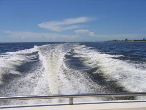 Bild 4 von Motorboot